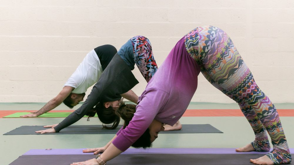 group yoga downward dog